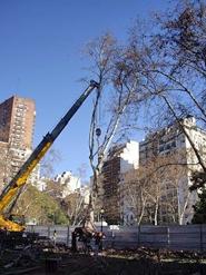 plaza-mitre0